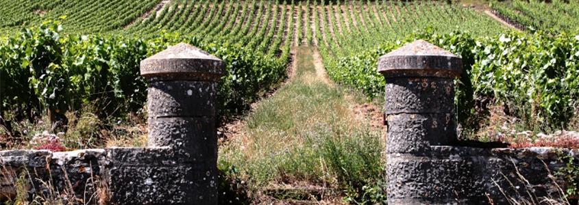 Achetez votre bien immobilier neuf en Bourgogne