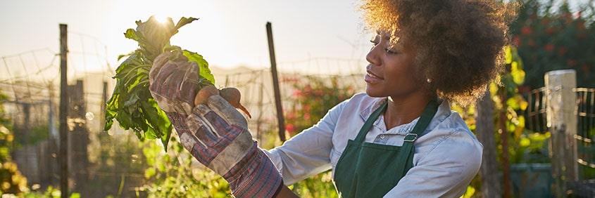 Mettez-vous+au+jardinage+pour+rendre+votre+logement+plus+écoresponsable