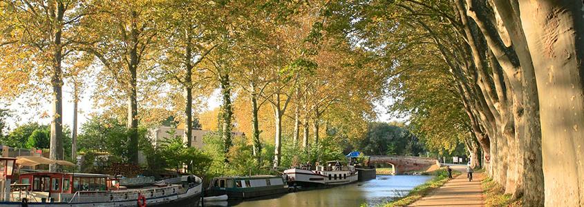 Toulouse, en Haute-Garonne, une ville idéale pour réaliser un placement immobilier dans le neuf