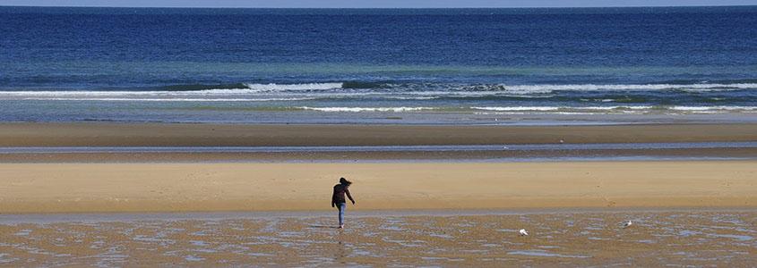 Immobilier neuf pour investir dans le Calvados, en Normandie