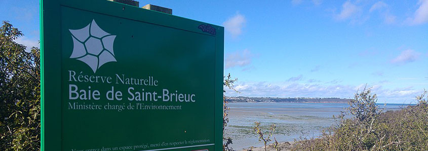 Toutes nos offres pour acheter à Saint-Brieuc