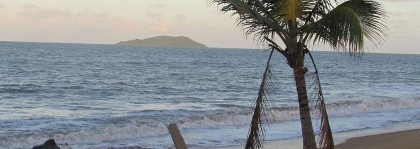 Nos logements neufs pour investir en Guyane, à Cayenne