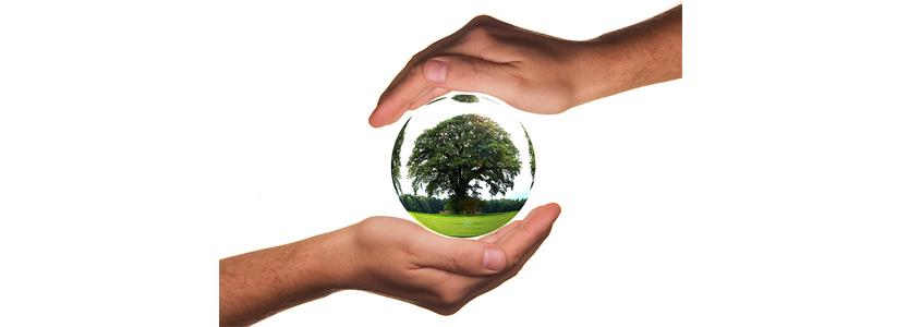 Une+aide+financi%C3%A8re+en+faveur+des+%C3%A9nergies+renouvelables