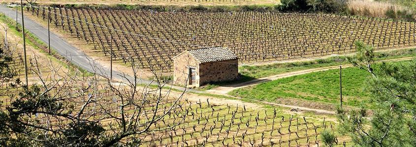 Acheter son logement dans l'Aude