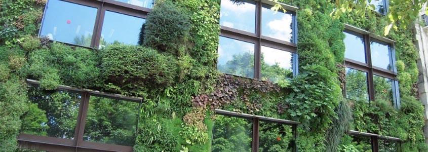 Mur Végétal – Musée du Quai Branly - ©Patrick Janicek