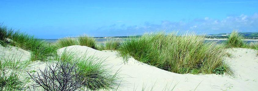 Pour investir en immobilier neuf dans le nord de la France, le Pas-de-Calais est à découvrir !